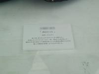 111214_孔雀02.jpg
