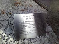120120_アリ02.jpg